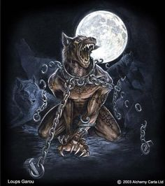 A servent from the full moon which had the force to kill mindless innocent people by stealing their sole, every time when the full moon apears. If they succeeded, they could be a human again after midnight. A legend told us that a werewolf is like a shape shifter between humans and wolves and only the full moon could show us the shift between them and it also shows us the real face of the human, catged inside! Luckely not every human has the curse. Only the once who are cursed by the demon.