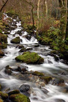 Wales - Snowdonia, Cadair Idris | by formalfallacy @ Dublin (Victor)