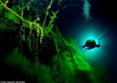 Astonishing underwater pictures shot by photographer Viktor Lyagushkin show an unexplored cave of networks of Russia's Blue Lake. Underwater Plants, Underwater Caves, Cave Diving, Scuba Diving, Movie Place, Sunken City, National Geographic Photographers, Underwater Pictures, Underwater Photographer