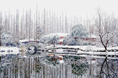 Winter in West Lake, Hangzhou (杭州, 西湖冬季) Photo by Eddie Cheng -- National Geographic Your Shot