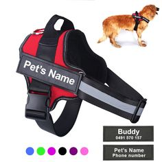 Nylons, Cat Dog, Dog Vest, Custom Patches, Service Dogs, Pet Names, Dog Harness, Aliexpress, Large Dogs