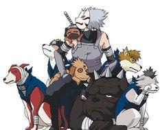 Kakashi and he's dogs