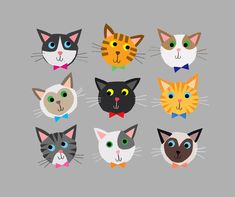 cally jane studio: CATS!