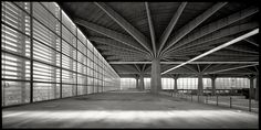 Matteo Cirenei : Finding Pier Luigi Nervi (shared via SlingPic)