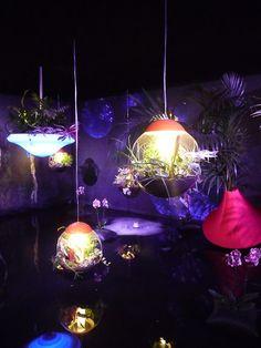 Astral Mood, Nature en lévitation, Alexis Tricoire, Vegetal Atmosphere, 11e Floralies internationales, Nantes (49)