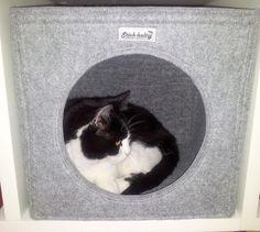 Katze: Schlafplätze - Katzenhöhle Katzenbett für das Regal - ein Designerstück von Stich-haltig bei DaWanda