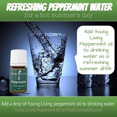 Peppermint Essential Oil Uses, Peppermint Water, Essential Oils Australia, Buy Essential Oils, Young Living Oils, Young Living Essential Oils, Young Living Peppermint, Refreshing Summer Drinks, Drinking Water
