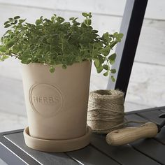 "Clay planter is stamped with ""herbs"" for windowsill or outdoor plantings of your favorite herbs."