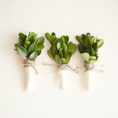 To tie a little more in, you could add boxwood to your bouquets and boutonnières... So sharp looking with navy and white.