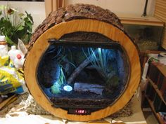 terrarium styrodur - Google Search Reptile Room, Reptile Cage, Reptile Enclosure, Chameleon Terrarium, Lizard Terrarium, Reptiles, Lizards, Snakes, Bearded Dragon Cage