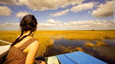 Florida's Everglades National Park covers 1.5 million acres of marshes, rivers and sawgrass prairie. Because airboats can access even super-shallow swamp areas, they offer a unique perspective on the 'river of grass' and the wildlife there.