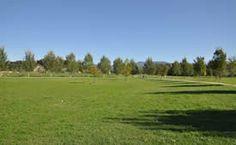 Vista dell'emiciclo alberato all'interno del Parco Fluviale di Lucca