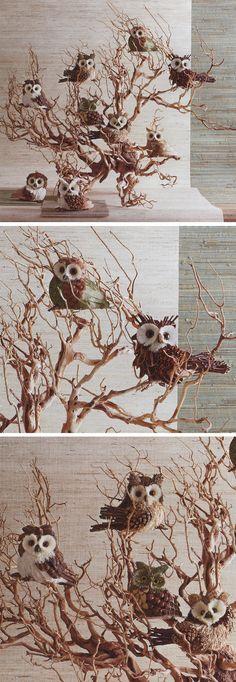Parliament of Owls Ornaments Pinned by www.myowlbarn.com