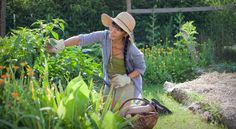 Nutrilite: September Is Healthy Aging Month