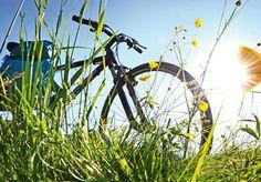 Fahrradbörse: gebrauchte Fahrräder auf einer selbst organisierten Börse verkaufen