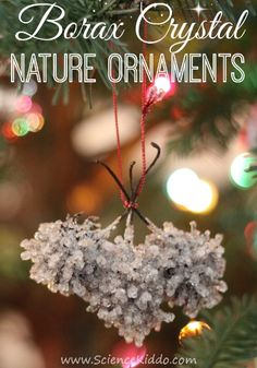Make borax crystal nature ornaments to complete your holiday decorating. The crystals look like frosty icicles and make the ornaments shimmer in the light.