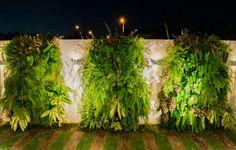 Jardim vertical... Esse Greenwall é complemento do projeto da Varanda de uma casa no Alphaville Eusébio, feito com um mix da plantas ornamentais tropicais para trazer a alta brasilidade para a varanda... #Paisagimo #Iluminação #Landscaping #AmbientalDesign #Work #FranklinMaia #GeorlandoPinheiro #AlphaVilleEuzebio #greenwall #JardimVertical #AmoSerPaisagista #Brasilidade #Design #varanda #livingexterno #Scaping #PaisagismoFortaleza  #PaisagismoBrasil #Paisagisgismoceará