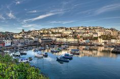 Brixham Harbour early morning
