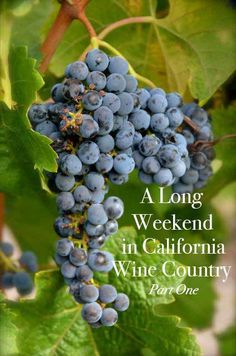 A long weekend in California wine country from Tricia A. Mitchell