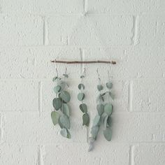 Create a eucalyptus wall hanging Eucalyptus Leaves, Small Leaf, As You Like, Wind Chimes, Flora, Gallery Wall, Create, Branches, Guest Room