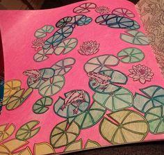 Lilies By Chantal Plourde