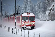 I went all over the Alps in one of these Little Red Trains in Switzerland during a winter vacation. I can STILL see it more than 15 years later. Tom Koebel. Luxury Voyages. 800-598-0595.