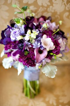 Assortment of pretty purple blooms from light to dark