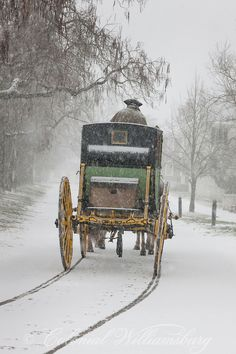 Driving the Carter Coach in a snow storm at Colonial Williamsburg. Photo by David M. Doody