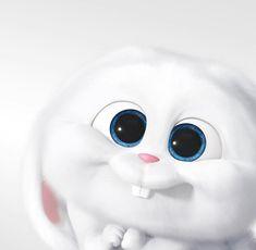See More in Pinsagram Cartoon Wallpaper Iphone, Disney Phone Wallpaper, Cute Cartoon Wallpapers, Cute Wallpaper Backgrounds, Cute Bunny Cartoon, Cute Cartoon Pictures, Cartoon Pics, Rabbit Wallpaper, Bear Wallpaper