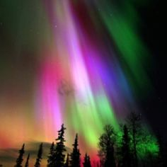 Why I love Alaska.  Northern lights
