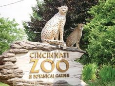 Cincinnati Zoo & Botanical Gardens  10 Things to do in Ohio