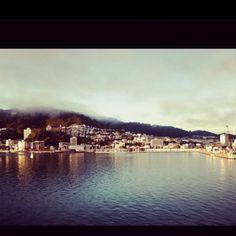 Windy Wellington. New Zealand.