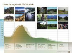 Áreas Naturales Protegidas de Tucumán. Infographic - Altitude Geography  Design: Ceci Estrella