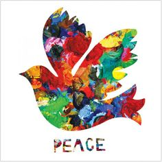 Coloured Dove Christmas Card from Amnesty International