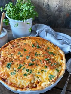 Pizza, Quiche, Bacon, Food And Drink, Dinner, Breakfast, Desserts, Dining, Morning Coffee