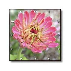 Autumn Beauty- Flowers- Floral Photography- Pink Zinnia - Wall Clocks