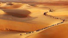 of the Hardest Places to Visit on Earth Camel Train - Border of Saudi Arabia and UAE by Josh Owens.Camel Train - Border of Saudi Arabia and UAE by Josh Owens. Wildlife Photography, Animal Photography, Amazing Photography, Abstract Photography, Photography Photos, Digital Photography, Travel Photography, Epic Photos, Photos Du
