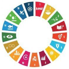 Un Sdgs Logo The 2030 Agenda For Sustainable Development Adopted By T Un Sustainable Development Goals Sustainable Development Sustainable Development Design