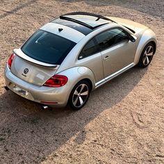 Vw Beetle Turbo, Vw Racing, Car Volkswagen, Vw Beetles, Bugs, Turtle, Outfit, Vehicles, Life