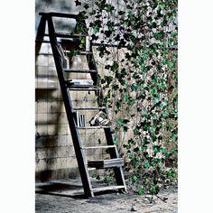 Scandinavian style and design minimalist pure simple Pure Simple, Nordic Art, Chevron Patterns, Interior Stylist, Chalkboard Paint, Scandinavian Style, Just Go, Home Art, Ladder Decor