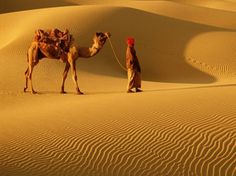 """A large chunk of Jaisalmer is covered by the Thar desert, a place reserved for the calm and hilly desert sands.  A camel safari is the only way to experience the rustic feel of the vast sand dunes.  HolidayIQ traveller Miss Shaila from Mumbai shares, """"Jaisalmer is a beautiful and colourful, historical"""