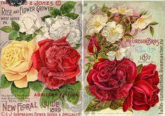 "6 ВИДОВ Карта (тонкая) декупажная ""Цветы 11"" - Декупаж,декупажные салфетки Seeds, Art Prints, Rose, Flowers, Art Impressions, Pink, Roses, Royal Icing Flowers, Flower"