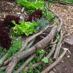 A truly organic approach is to line your landscaping beds with fallen tree branches. Regular maintenance may be needed to keep things tidy, but the beautiful result is both earth- and wallet-friendly.