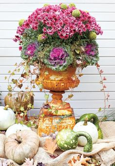 I've been searching inspiration for doing some plantings for Fall out front   and I came across literally hundreds of examples of container...