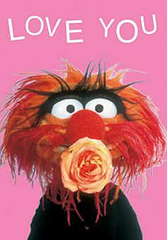 animal from the muppets valentine | The Muppets Cards