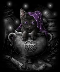 Pagan, Wiccan, Witches and Wizardry and everything in Between. Chat Halloween, Google Halloween, Spooky Halloween, Wiccan Art, Magic Cat, Image Chat, Pagan Witch, Witches, Witch Cat