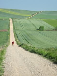 Miles and miles to think... life goal: walk the Camino de Santiago