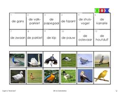 vogels 12 First Grade, Mini, Letters, Learning, School, Projects, Image, Log Projects, Blue Prints