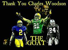 Michigan Athletics, Michigan Wolverines Football, University Of Michigan, Green Bay Packers, Packers Baby, Charles Woodson, Teddy Bridgewater, Raiders Fans, Go Big Blue