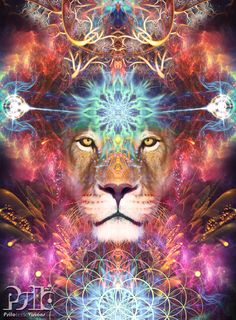 Beautiful Lion Visionary Art.  Sacred Geometry Art.  Fractal Art  Copyright Psiloteric Visions © 2017